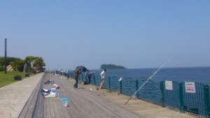 海辺つり公園 2013.5.22