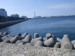 福浦テトラ 2013.5.18 ポイント