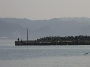鴨川港先端 2014.5.3