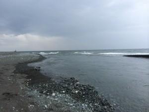 酒匂川河口 2014.7.13
