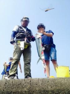 シイラ 2015.8.8 井田港釣果